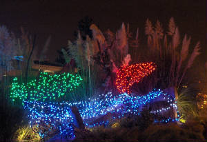 Commercial Holiday Lighting throughout Portland Oregon
